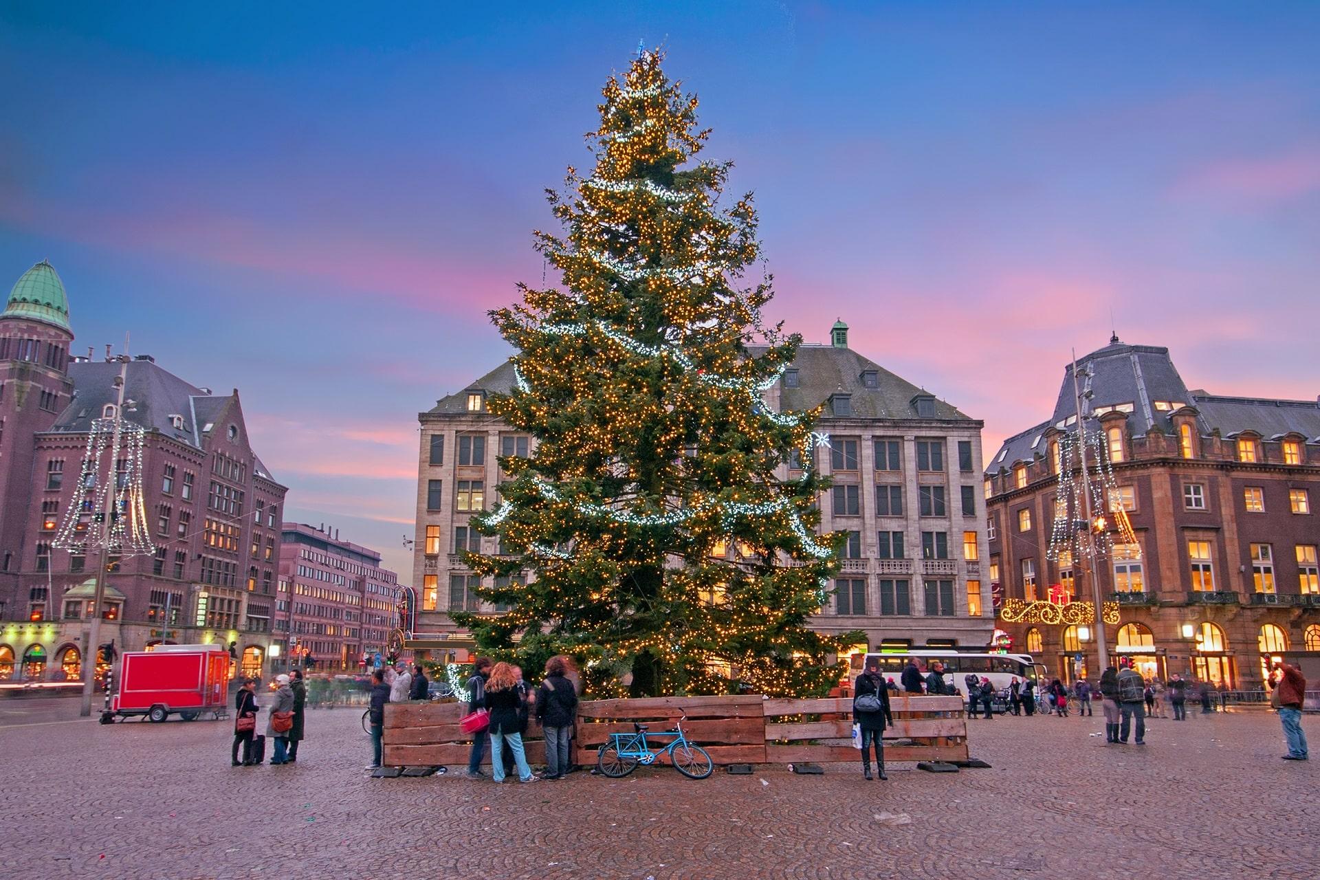 Amsterdam-Christmas-Tree